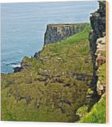 Cliff Of Moher 16 Wood Print