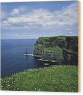 Cliffs Of Moher, Co Clare, Ireland Wood Print