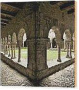 Cloister Of Lavaudieu. Haute Loire. Auvergne Wood Print by Bernard Jaubert