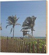Coastal Life Wood Print