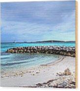 Coco Cay Wood Print