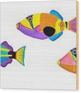 Collection Of Trigger Fishes Wood Print