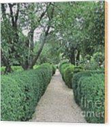 Colonial Garden Path Wood Print