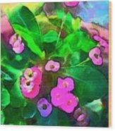 Color 115 Wood Print