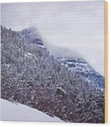 Colorado Wood Print
