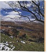 Comeragh Mountains, County Waterford Wood Print by Richard Cummins