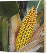 Corn Cob Wood Print