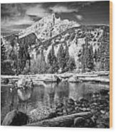 Cottonwood Creek Wood Print