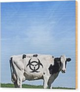 Cow And Biohazard Sign, Artwork Wood Print