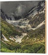 Cow Creek Drainage  Wood Print