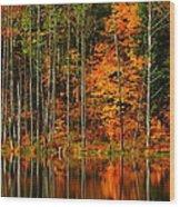 Coxsackie New York State Wood Print