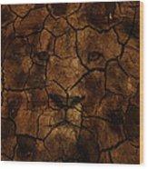 Cracks Of A King Wood Print