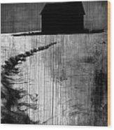 Crawling Home Blues  Wood Print