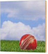 Cricket Ball On Grass Wood Print