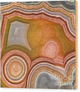 Cross-section Of Mexican Agate Wood Print