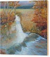 Crossing Stones Wood Print by Max Mckenzie