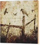 Crows And The Corner Fence Wood Print