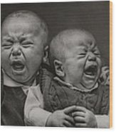 Cry Babies Wood Print by Pat Abbott