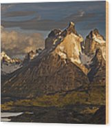 Cuernos Del Paine And Lago Pehoe Wood Print