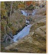 Cunningham Falls Wood Print