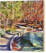 Cunningham Falls Walkway Wood Print
