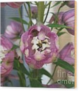 Delphinium Named Magic Fountains Lilac Pink Wood Print