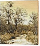 Desert Trail Wood Print