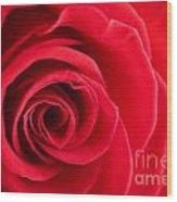 Detail Of Red Rose Wood Print