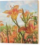 Digital Painting Of Orange Daylilies Wood Print