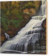 Dingmans Falls Wood Print