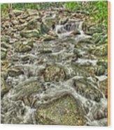 Downhill Rush Wood Print