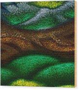 Dragon's Tale Wood Print