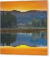 Dry Lagoon Dawn Wood Print