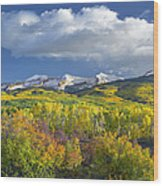 East Beckwith Mountain Flanked By Fall Wood Print