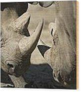 Eastern Black Rhinoceros Wood Print