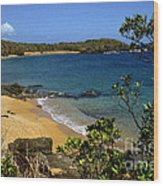 El Convento Beach Wood Print
