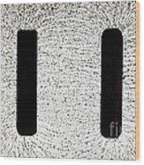 Electrostatic Field Lines Wood Print