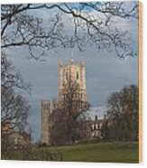 Ely Cathedral In City Of Ely Wood Print