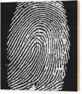 Enlarged Fingerprint Wood Print