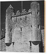 Enniskillen Castle County Fermanagh Ireland Wood Print