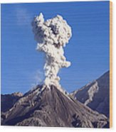 Eruption Of Ash Cloud From Santiaguito Wood Print