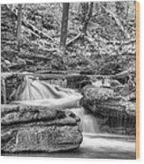 Escapes  Wood Print