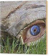 Eye Of A Dinosaur Lightning Wood Print