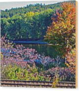 Fall By The River 4 Wood Print