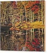 Fall Forest Reflections Wood Print