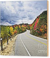 Fall Highway Wood Print