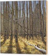 Fall On The Mountain  Wood Print