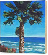 Fan Palm - Diamond Head Wood Print