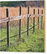 Fence Perspective Wood Print