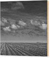 Field Furrows And Clouds In South East Texas Wood Print